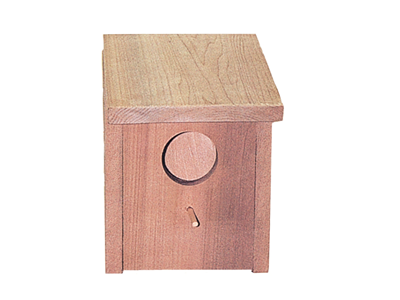 Square shaped wood blue bird house
