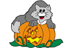 Cat on pumpkin is a fun and whimsical way to celebrate Halloween