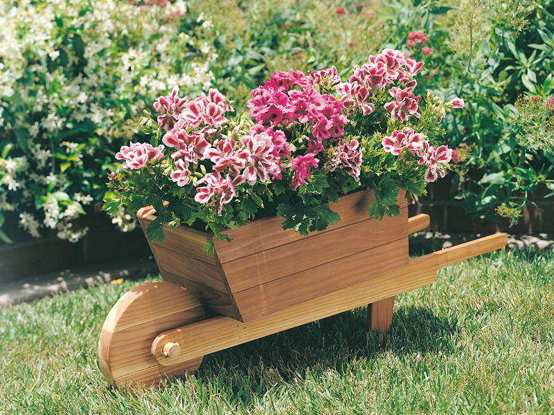 Spanish Plan Front of Home Wheelbarrow Planter