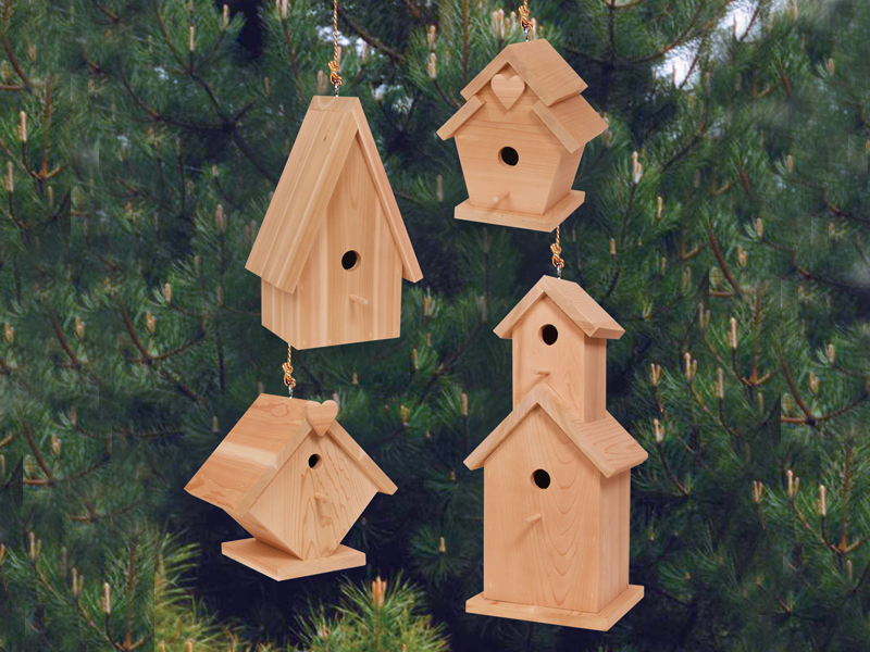Country Plan Front of Home Birdhouse Village
